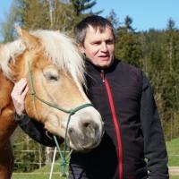 Horse-man-ship-Kurs-Anna (22)