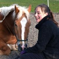 Horse-man-ship-Kurs-Anna (37)
