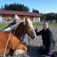 Horse-man-ship-Kurs-Anna (55)