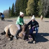 Horse-man-ship-Kurs-Anna (80)