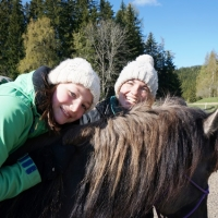 Horse-man-ship-Kurs-Anna (87)