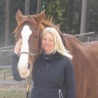 Unsere Horsemanship Tage zu Ostern